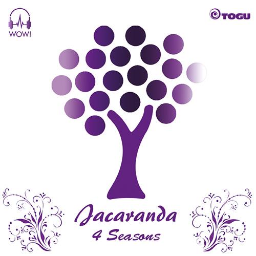 Jacaranda - 4 Seasons